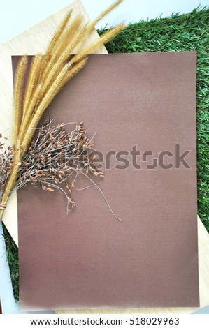 Blank paper for text with dried flower on wooden put on green grass