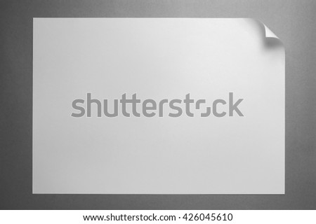 Blank paper page with curl isolated on gray - stock photo