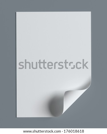 Blank paper page with curl on grey background with soft shadows. - stock photo