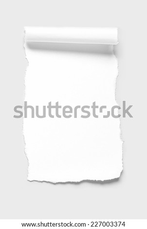 Blank paper scrap in scroll shape - stock photo