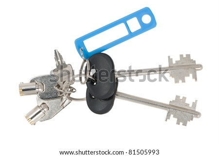 Blank tag and keys isolated on white background - stock photo