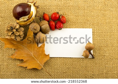 Blank white paper sticker with autumn leaves, fir cones, rosehip, seabuckthorn, acorns, chestnuts on old rustic hemp fabric background - stock photo