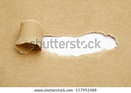 Blank white space in torn brown paper. - stock photo