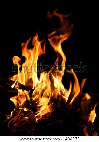 Blazing camp fire - stock photo