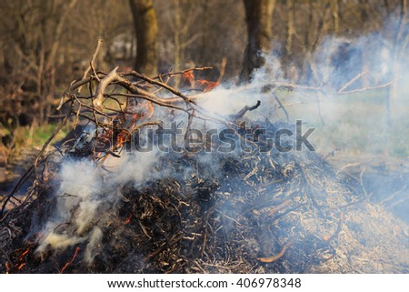 Blazing campfire in nature, pile of ashes, outdoors - stock photo