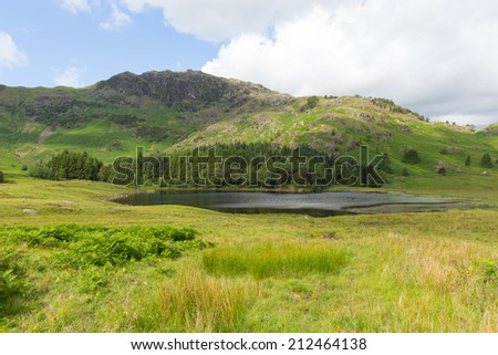 Blea Tarn Lake District Cumbria England UK between Great Langdale and Little Langdale  - stock photo