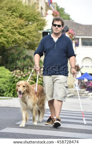 Blind man crossing the street with help of guide dog - stock photo