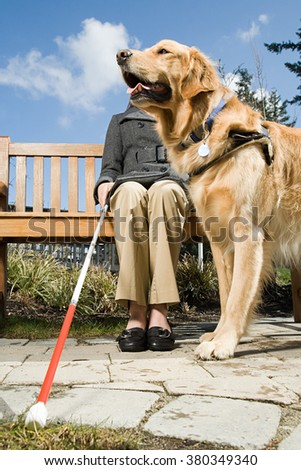 Blind woman and a guide dog - stock photo
