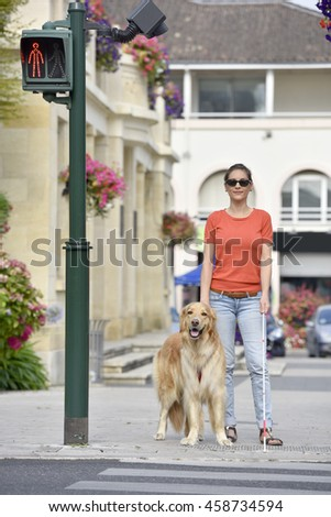 Blind woman crossing the street with help of guide dog - stock photo