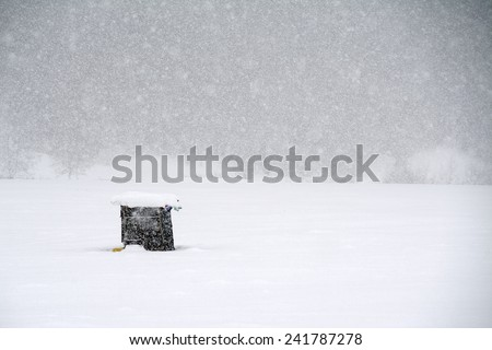 Blizzard winter landscape - stock photo