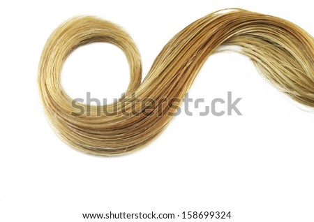 Blond Hair isolated on white - stock photo