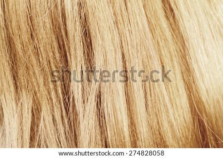 Blonde hair. Blond hair texture - closeup photo - stock photo