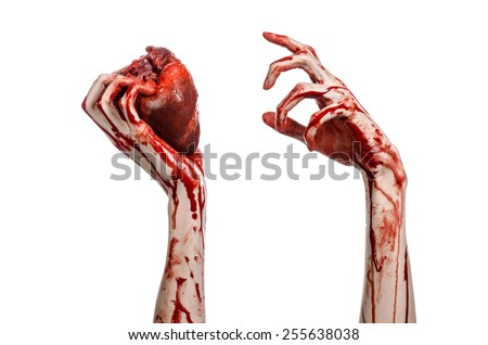 Blood and Halloween theme: terrible bloody hand hold torn bleeding human heart isolated on white background in studio - stock photo
