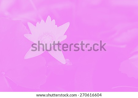 bloom lotus flower painting style - stock photo