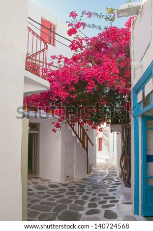 Blooming bougainvillaea about storefront on the street of the island of Mykonos in Greece. - stock photo