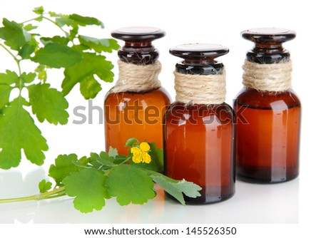 Blooming Celandine with medicine bottles isolated on white - stock photo