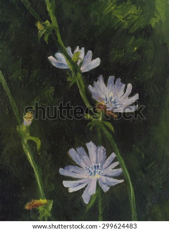 Blooming chicory. Oil painting