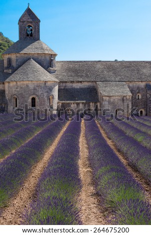 Blooming field of Lavender in front of Senanque Abbey, France - stock photo