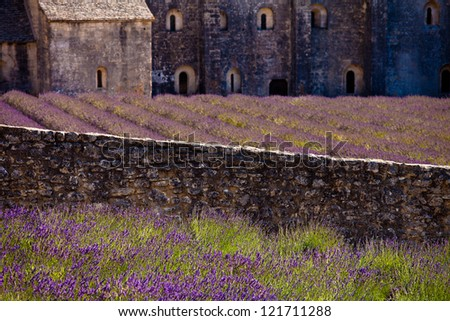 Blooming field of Lavender (Lavandula angustifolia) in front of Senanque Abbey, Gordes, Vaucluse, Provence-Alpes-Cote d'Azur, Southern France, France, Europe - stock photo