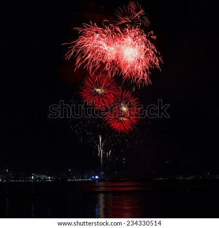 Blooming firework red color of celebration night - stock photo