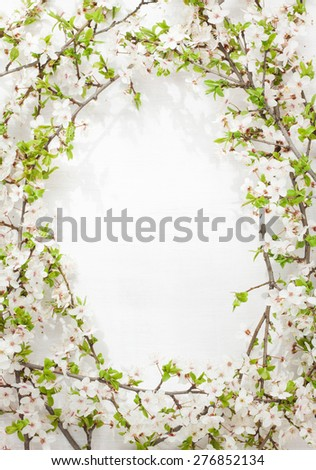 Blooming (flowering) tree branches as round frame on white painted wood captured from above. Spring blossom - background layout with free text space. - stock photo