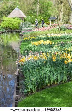 Blooming flowers in Keukenhof Garden, Lisse, Netherlands - stock photo
