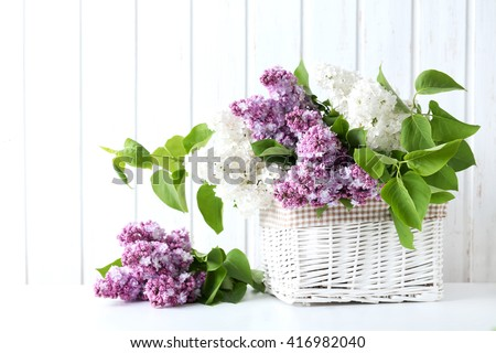 Blooming lilac flowers in the basket on wall paneling background - stock photo