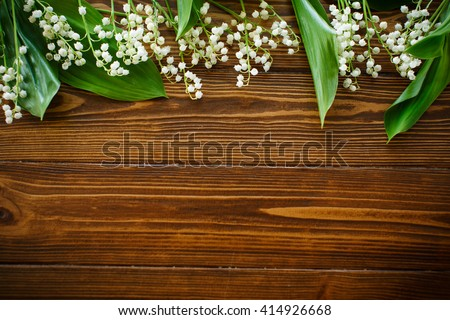 blooming lily of the valley - stock photo