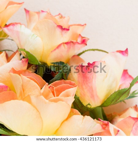Blooming orange, yellow and red roses against a yellowed paper background