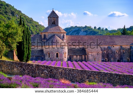 Blooming purple lavender fields at Senanque monastery, Provence, southern France - stock photo