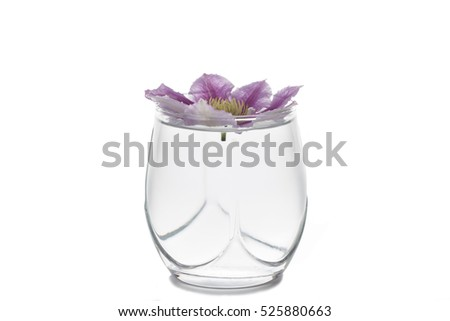 Blossom cluster in the tumbler. Isolated on the white background.