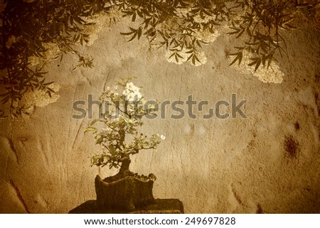 Blossoming apple tree bonsai under a big tree on old paper background - stock photo