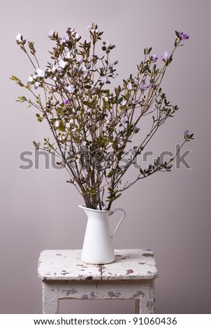 Blossoming Labrador tea in the vintage jug on  old stool