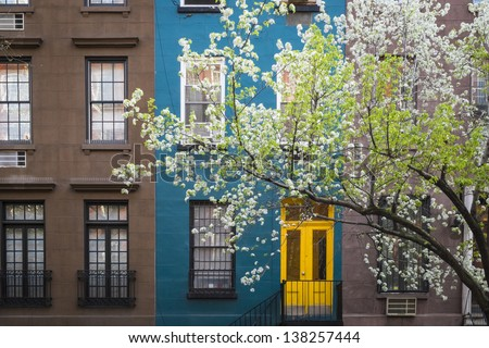 Blossoming tree near an old apartment building, Manhattan, New York City - stock photo