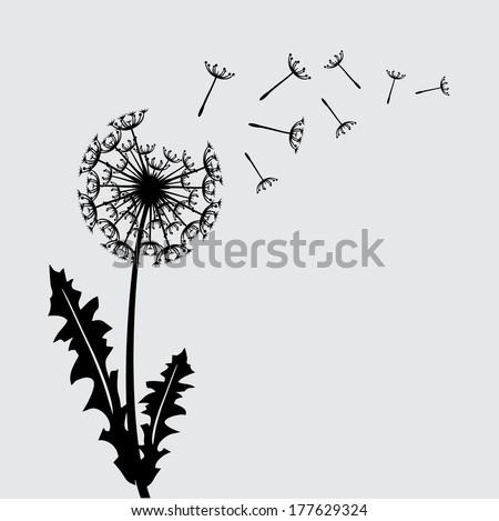 Blow dandelion floral background concept/ Flower. Raster version - stock photo