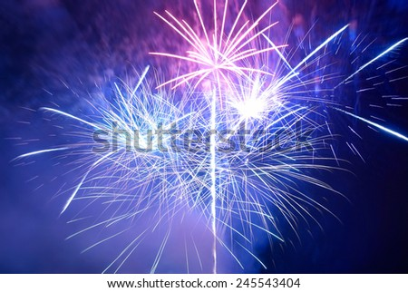 Blue and purple colorful fireworks on the black sky background. Holiday celebration. - stock photo