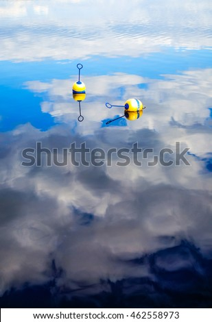 Blue and white buoys floating serenely on the surface of a placid lake.