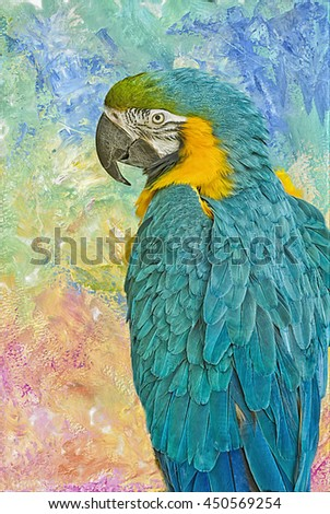 Blue and yellow macaw parrot on textured background,digital oil painting