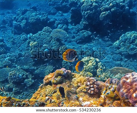 Blue And Yellow Sea Landscape With Tropical Fish Coral Undersea View Digital Illustration