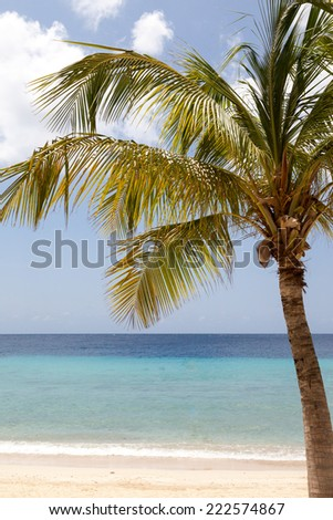 Blue Bay Beach in Curacao a Caribbean Island in the Caribbean