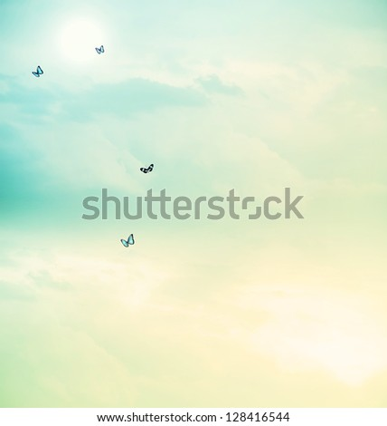 Blue butterflies on the cloudscape - stock photo