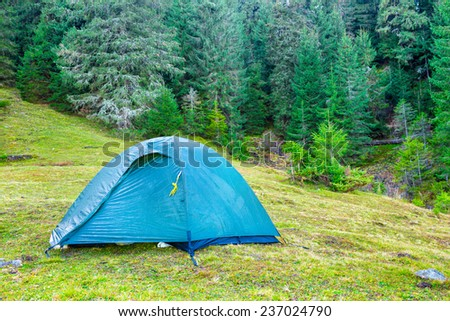 Blue camping tent in a green forest with pine trees - stock photo