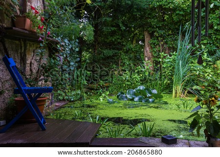 blue chair in front of a garden pond - stock photo