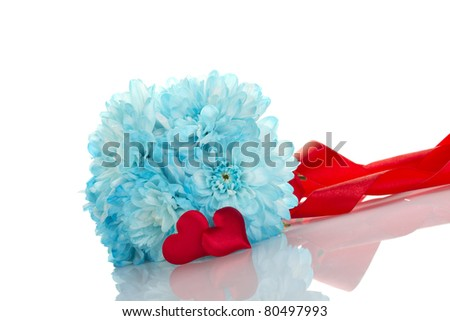 Blue chrysanthemums with two red hearts. Gift. Isolated on white background - stock photo