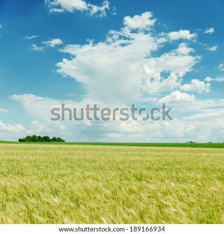 blue cloudy sky and green field - stock photo