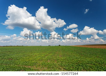 Blue cloudy sky over green meadow - stock photo