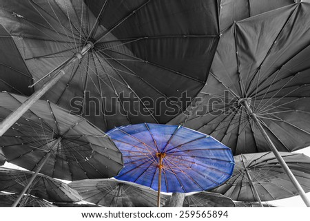 Blue color beach umbrella - stock photo