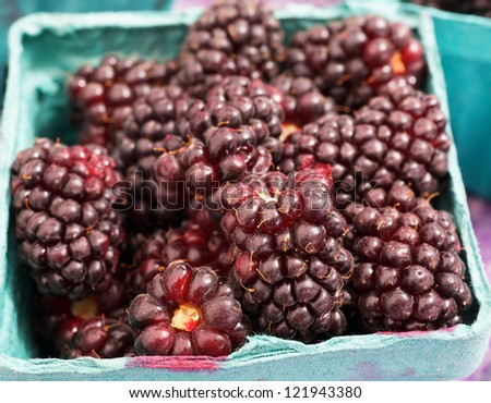 Blue container of a pile of Red Juicy Boysenberries at the farmers market - stock photo