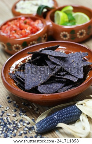 blue corn tortilla chips with salsa - stock photo