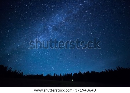 Blue dark night sky with many stars above field of trees. Yellowstone park. Milkyway cosmos background - stock photo